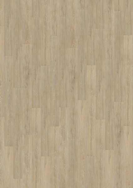 Korkboden Hell eiche ivory chalk hell 1 stab korkboden wood essence wicanders