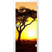 Afrika Fotoprint Glastür - Erkelenz
