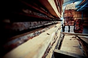 Holzarten, Deine Tür