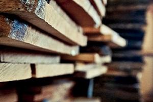 Holzarten für Türen