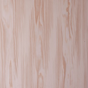 Tür Holz Oberflächen Türen Wiki Wissen